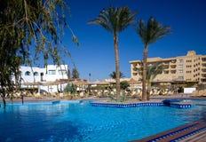 Zwembad en palm Royalty-vrije Stock Afbeelding