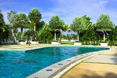 Zwembad en palmtuin Stock Afbeeldingen