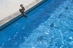 Zwembad gewaagde sprong royalty-vrije stock afbeelding