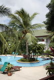 Zwembad kunstmatig eiland met palm, zonlanterfanters naast de tuin en gebouwen Stock Fotografie
