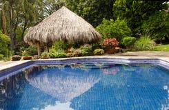 Zwembad in tropische tuin Stock Foto's