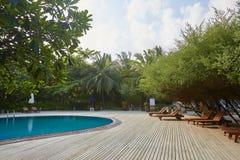 Zwembadkant van de ligstoelen van het luxehotel ith, palmen en blauwe oceaan maldives stock foto's