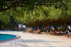 Zwembadkant van de ligstoelen van het luxehotel ith, palmen en blauwe oceaan maldives stock fotografie