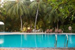 Zwembadkant van de ligstoelen van het luxehotel ith, palmen en blauwe oceaan maldives stock afbeelding