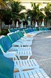 Zwembadstoelen en groene palmen Stock Foto