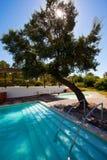Zwembadterras royalty-vrije stock fotografie