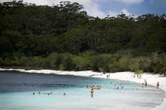 Zwemmend in meer Alexandara, eiland Fraser royalty-vrije stock foto's