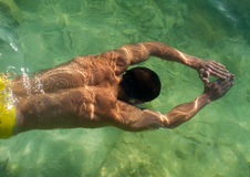Zwemmend model Royalty-vrije Stock Foto