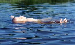 Zwemmende jongen Royalty-vrije Stock Afbeeldingen