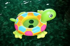 Zwemmende Schildpad Royalty-vrije Stock Foto