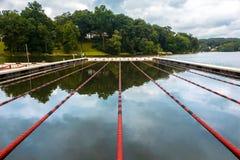 Zwemmende stegen op een meer stock afbeelding