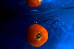 Zwemmende tomaat 2 Royalty-vrije Stock Foto's