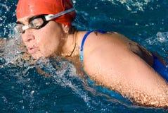 Zwemmer royalty-vrije stock fotografie