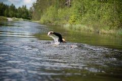 Zwemmer in een kanaal Stock Foto's