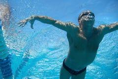 Zwemmer in het zwembad Royalty-vrije Stock Afbeeldingen
