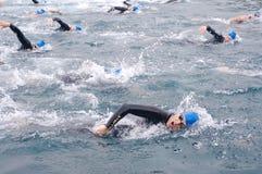 Zwemmers Stock Foto's