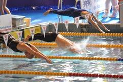Zwemmers die in zwembad duiken Stock Foto's