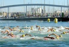 Zwemmers op de open wateren royalty-vrije stock fotografie