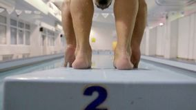 Zwemmersopwarming alvorens te zwemmen stock videobeelden