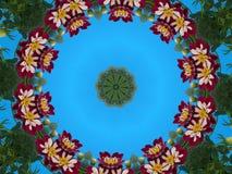 Zwergartige Dahlia Wreath Lizenzfreies Stockfoto
