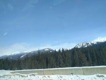 Zwervend rond Banff, Alberta, Calgary in de winter stock afbeelding