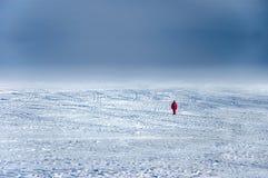 Zwerver op ijs royalty-vrije stock afbeelding
