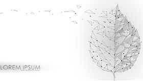 Związany kropka punktu linii trójboka liść Eco natury pojęcie na białym tle zaświeca geometryczną ikona szablonu ilustrację royalty ilustracja