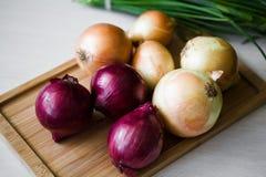 Zwiebel auf dem Ausschnittholzvorstand Lizenzfreie Stockfotografie