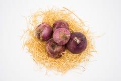 Zwiebel auf dem Nest mit wei?em Hintergrund stockfoto