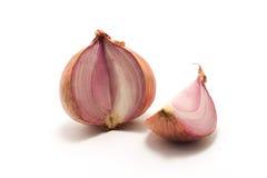 Zwiebel auf einem weißen Hintergrund Lizenzfreies Stockfoto