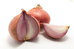 Zwiebel auf einem weißen Hintergrund Stockbilder