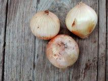 Zwiebel auf hölzerner Tabelle Lizenzfreies Stockfoto