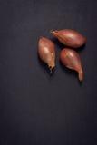Zwiebel auf schwarzem Steinhintergrund Lizenzfreie Stockbilder