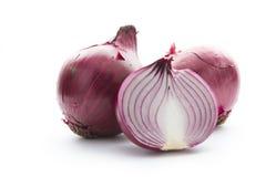 Zwiebel auf Weiß Stockbild