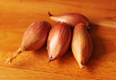 Zwiebel bereiten sich vor Lizenzfreie Stockbilder