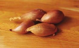 Zwiebel bereiten sich vor Lizenzfreie Stockfotos