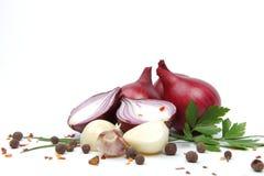 Zwiebel mit Knoblauch und Gewürzen Lizenzfreie Stockbilder
