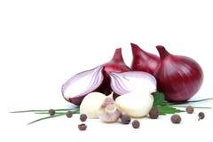 Zwiebel mit Knoblauch und Gewürzen   Stockfoto