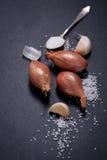 Zwiebel mit Knoblauch und Salz Lizenzfreie Stockfotografie