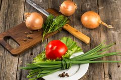 Zwiebel, Schnittlauch und Tomate Lizenzfreies Stockfoto