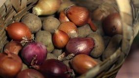 Zwiebel und Kartoffeln, die in Weidenkorb sich drehen stock footage