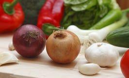 Zwiebel und Knoblauch Lizenzfreies Stockbild