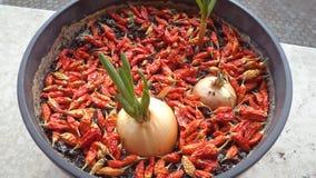 Zwiebel und Pepperonis im Vase Stockfotografie