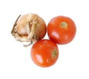 Zwiebel und Tomaten Lizenzfreie Stockbilder