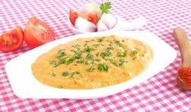 Zwiebel-und Tomaten-Soße Stockfotos