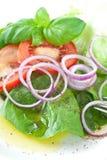 Zwiebelen-und Tomate-Salat Stockbild