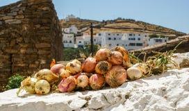 Zwiebeln auf einer weißen Wand Stockfotografie