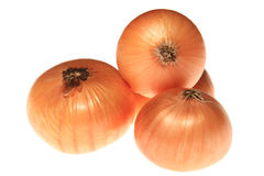 Zwiebeln auf Weiß Lizenzfreie Stockfotografie