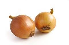 Zwiebeln auf weißem Hintergrund lizenzfreies stockbild