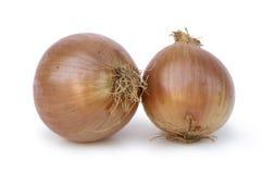 Zwiebeln auf weißem Hintergrund Stockfotos